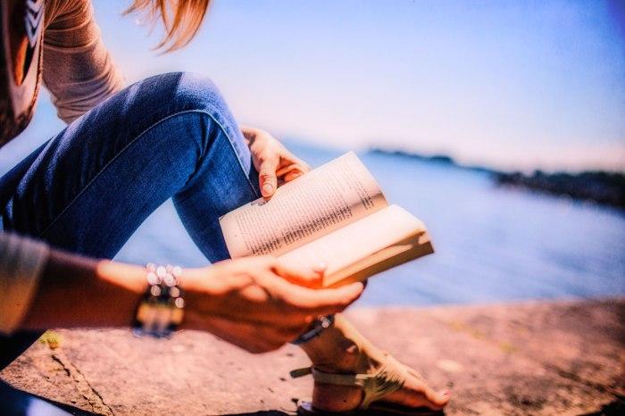 Story Idea – A NovelRevenge