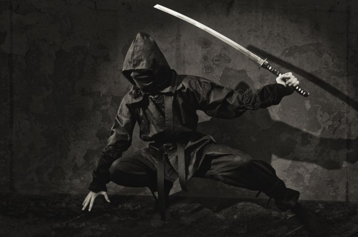Story Idea – Ninja Orphanage